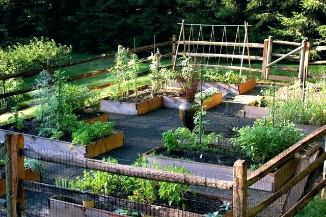 Wooden Raised Boxes Vegetable Garden