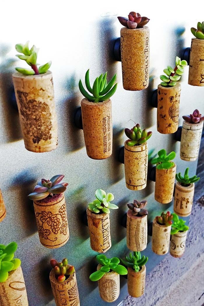 Wine Corks Wall Decor With Succulents #repurpose #reuse #kitchen #utensil #decorhomeideas