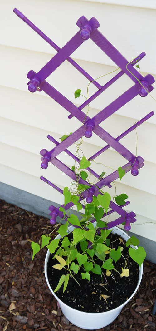 According Peg Rack Trellis