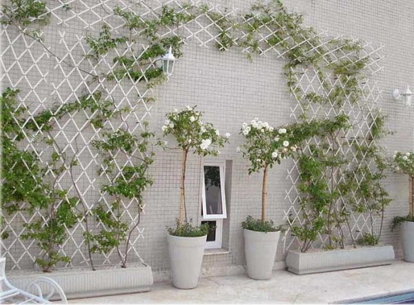 Trellis Ideas In White #garden #trellis #decorhomeideas
