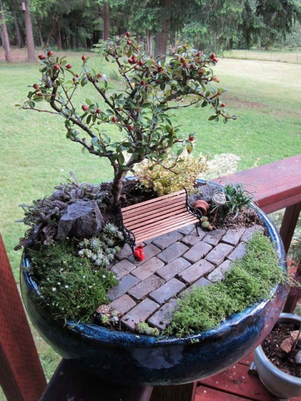 Bonsai Tree Mini Garden #fairygarden #diy #decorhomeideas
