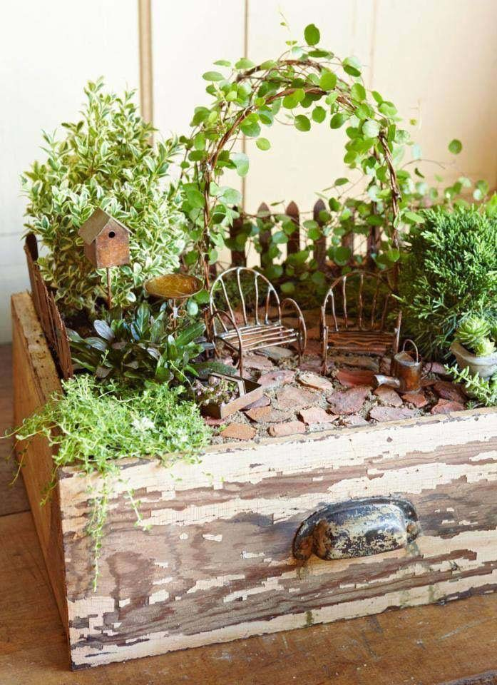 Container Fairy Garden #fairygarden #diy #decorhomeideas