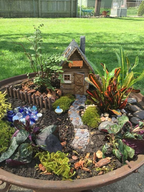 Cute Fairy Garden #fairygarden #diy #decorhomeideas