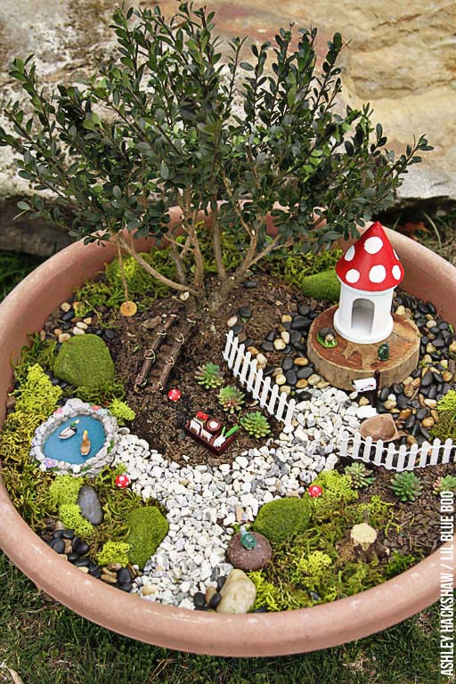How To Bonsai Fairy Garden #fairygarden #diy #decorhomeideas