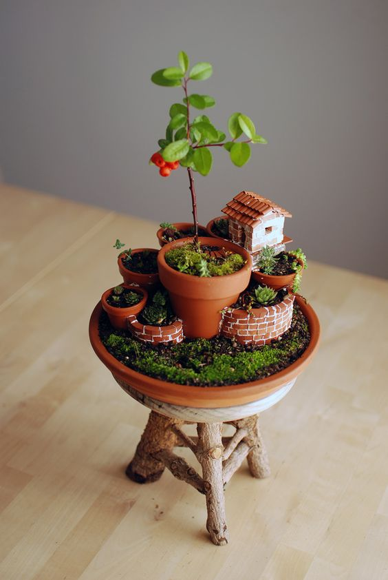 Mini Garden In a Mini Pot #fairygarden #diy #decorhomeideas