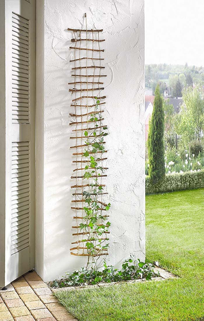 Easy Wall Lattice Trellis