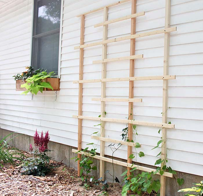 Simple DIY Trellis Idea #garden #trellis #diy #decorhomeideas