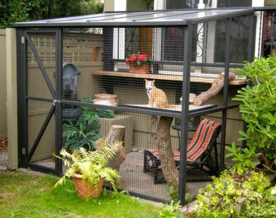 Big Screened Cat Porch