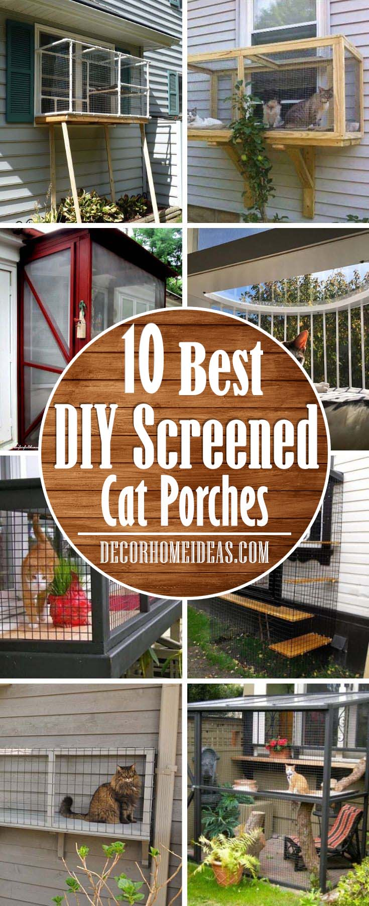 DIY Cat Screened Porch. Screened Cat Porches are a great way to keep your kitty safe, all the while enjoying the fresh air and the great outdoors. #cat #homedecor #porch #decorhomeideas