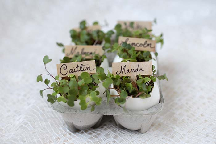 Eggshell Place Card Holders #easter #diy #rustic #decor #decorhomeideas