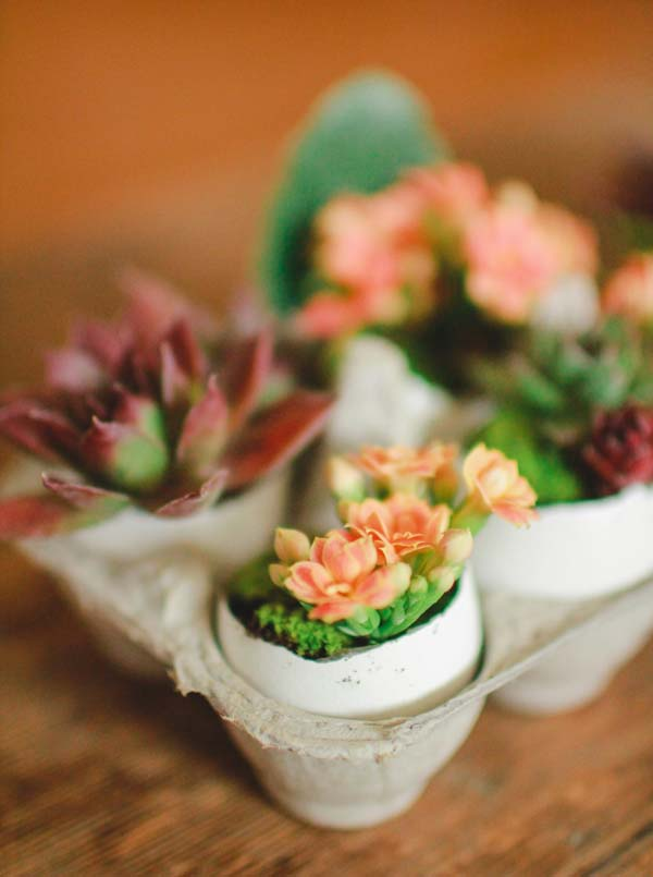 Eggshell Planters #easter #diy #cheap #decor #decorhomeideas