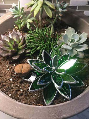Stained Glass Succulents 3