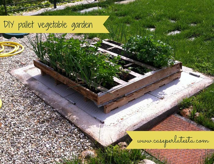 DIY Wood Pallet Vegetable Garden #diy #planter #wood #flower #pallet #decorhomeideas