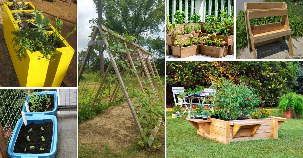 Cheap And Easy Raised Garden Beds