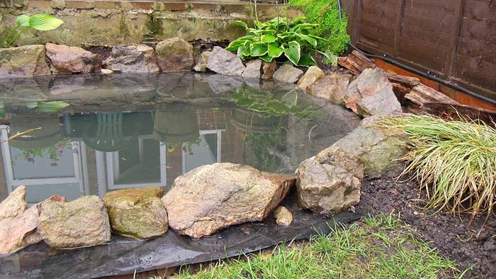 Hand Dug Garden Fish Pond #pond #diy #garden #waterfeature #decorhomeideas