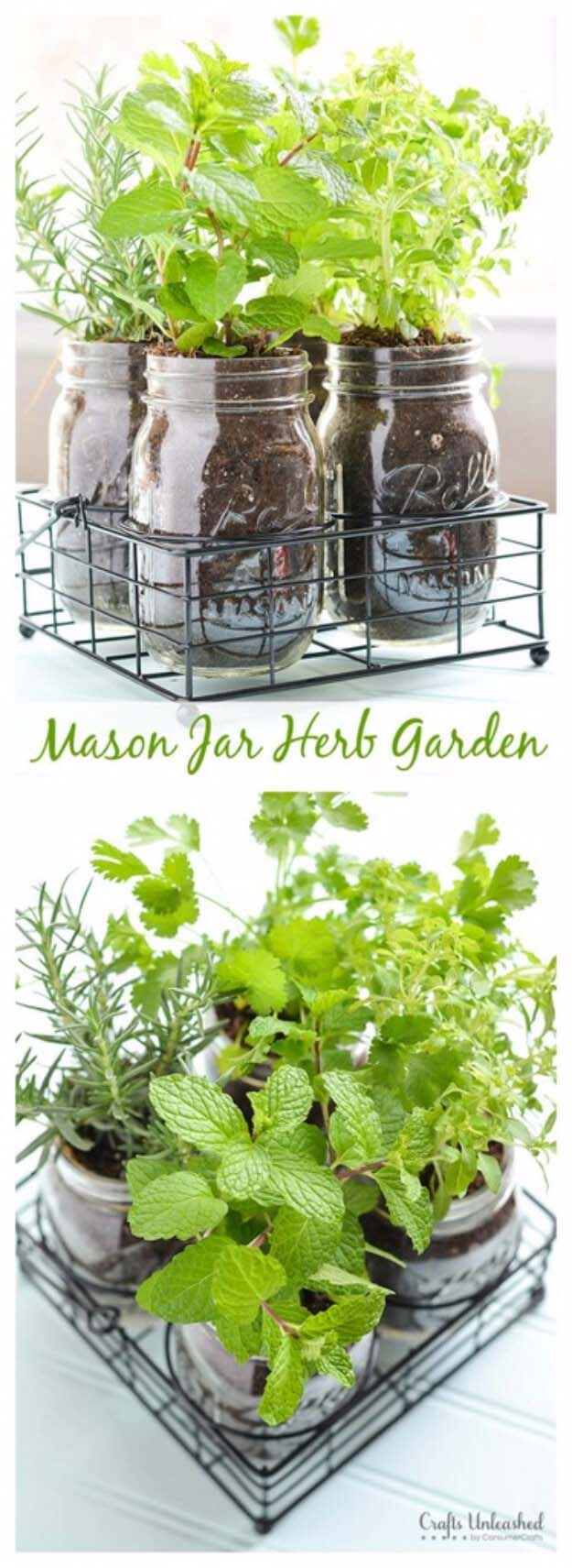 Herbs in a Jar #diy #herbgarden #herbs #garden #ideas #decorhomeideas