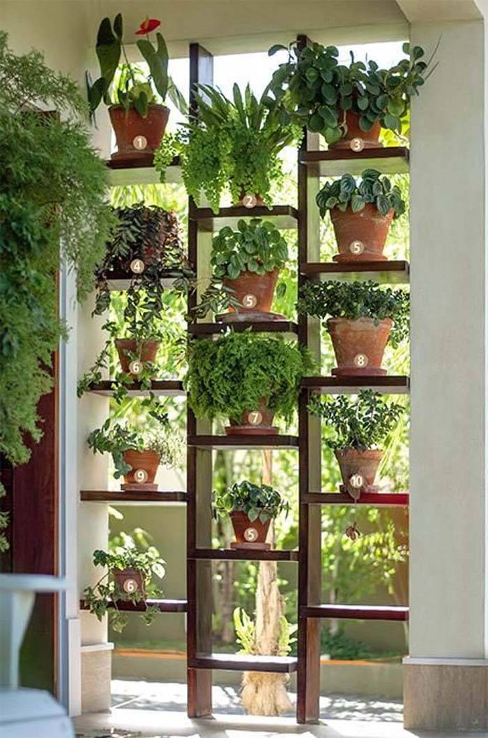 Ladder-Style Sunny Window Herb Garden #diy #herbgarden #herbs #garden #ideas #decorhomeideas