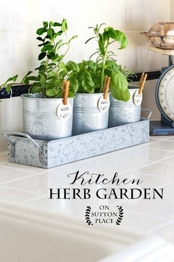 Pretty Little Pails Herb Garden #diy #herbgarden #herbs #garden #ideas #decorhomeideas