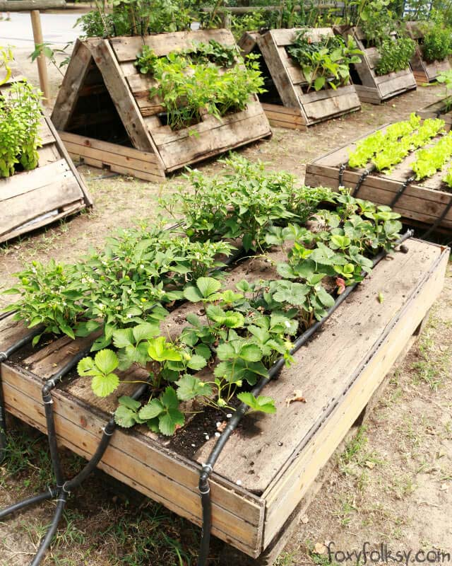 18 Cheap And Easy To Build Raised Garden Beds