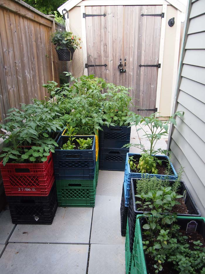 Space Saving Raised Garden on a Budget #raisedbed #garden #diy #cheap #decorhomeideas
