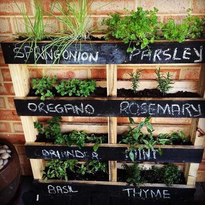 Stacked Wooden Shelves Herb Garden #diy #herbgarden #herbs #garden #ideas #decorhomeideas