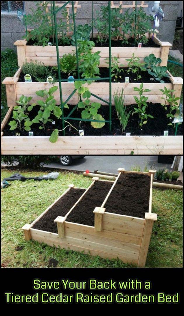 Tiered Cedar Raised Garden Bed #raisedbed #garden #diy #cheap #decorhomeideas