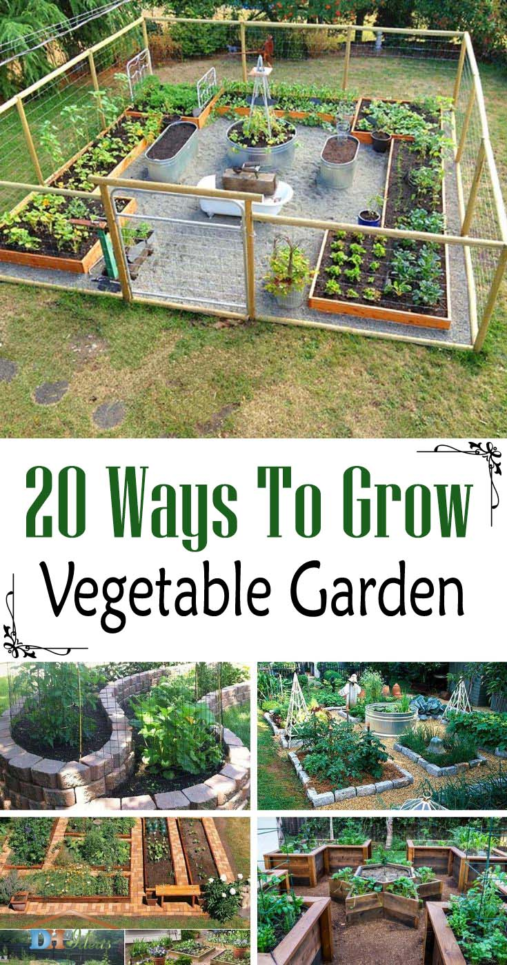 Ways To Grow Vegetable Garden. Find more than 20 great solutions on how to grow a DIY vegetable garden. Start yours today! #vegetablegarden #garden #diy #growvegetables #decorhomeideas