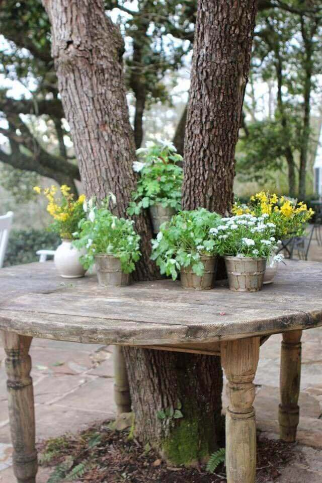 A Tree Grows Through It #diy #potting #bench #garden #decorhomeideas