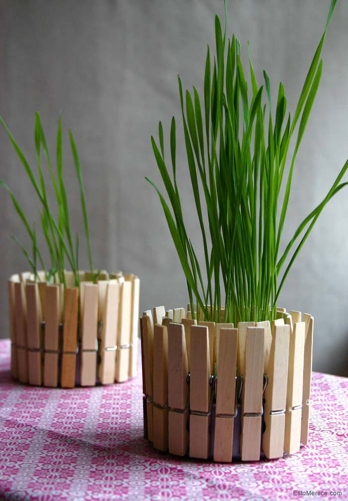 Decorative Grass with Clothespin Fence #diy #flowerpot #garden #flower #decorhomeideas