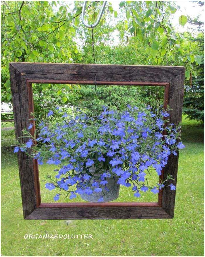 Perfectly Framed DIY Lobelia Planter #diy #planter #flower #hanging #garden #decorhomeideas