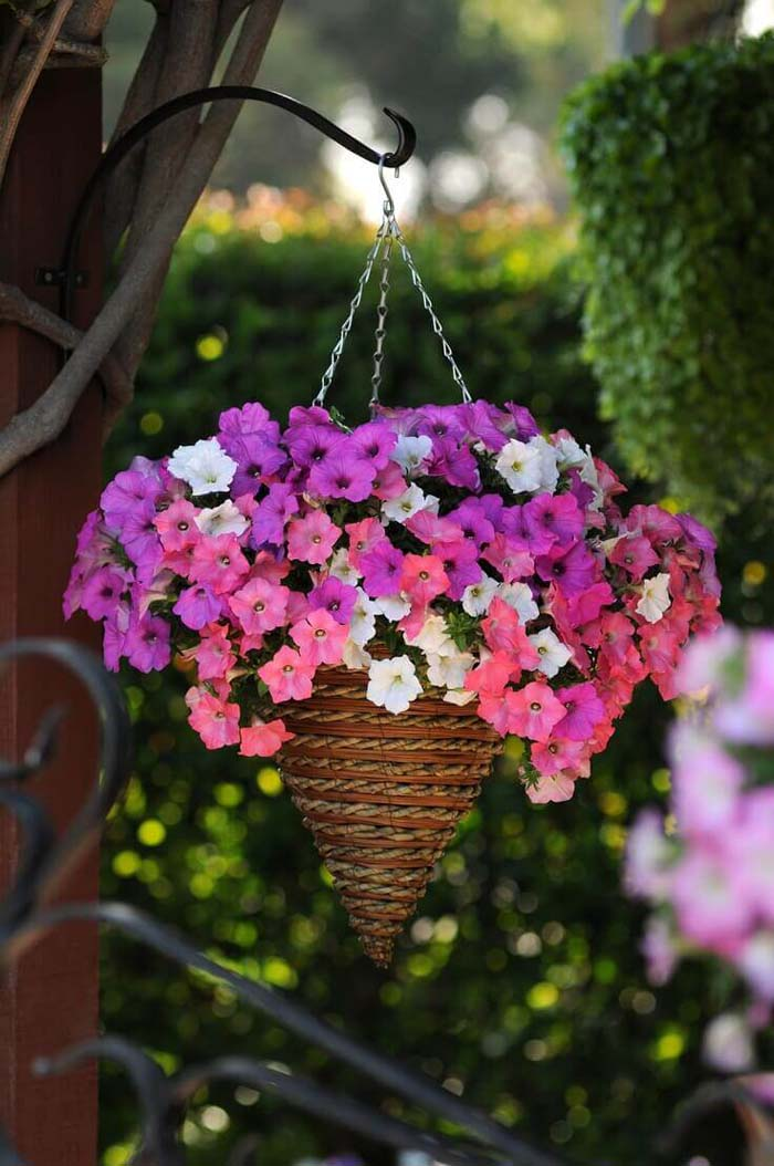 Pretty Cone Shaped Petunia Planter #diy #planter #flower #hanging #garden #decorhomeideas