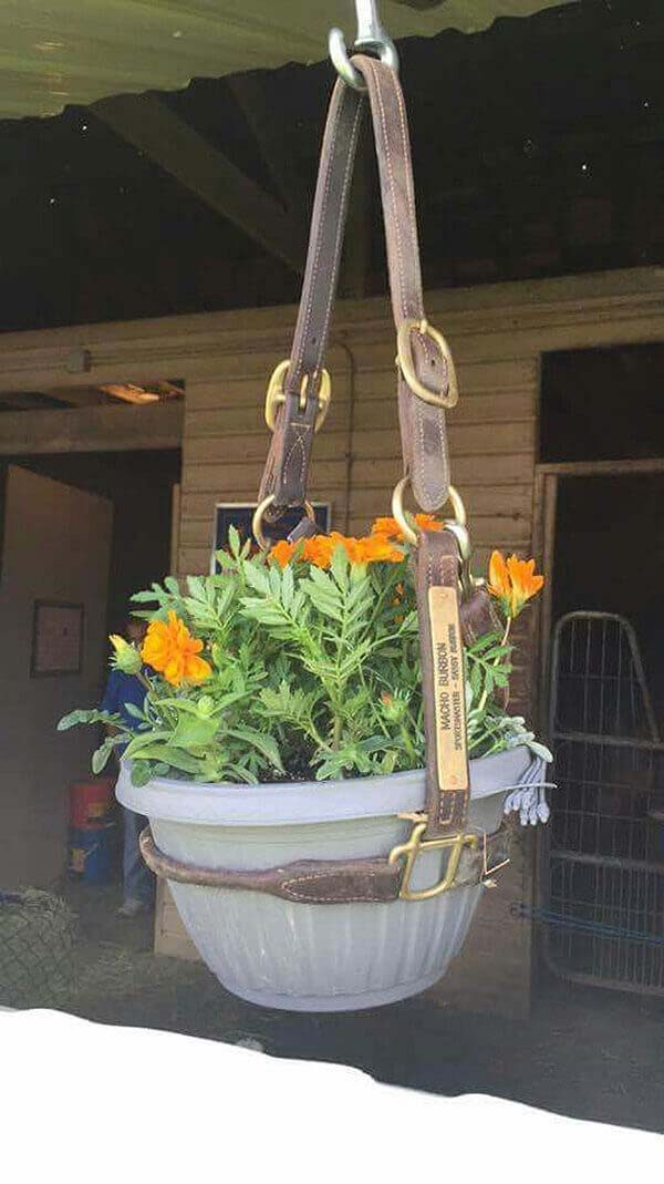 Recycled Horse Bridle Hanging Pot Holder #diy #planter #flower #hanging #garden #decorhomeideas