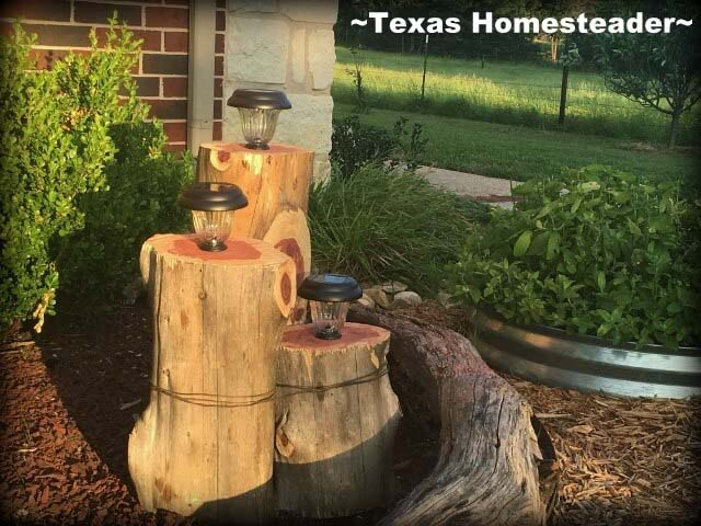 Rustic and Beachy Cedar Light Holders #diy #solar #lights #solarlight #garden #decorhomeideas