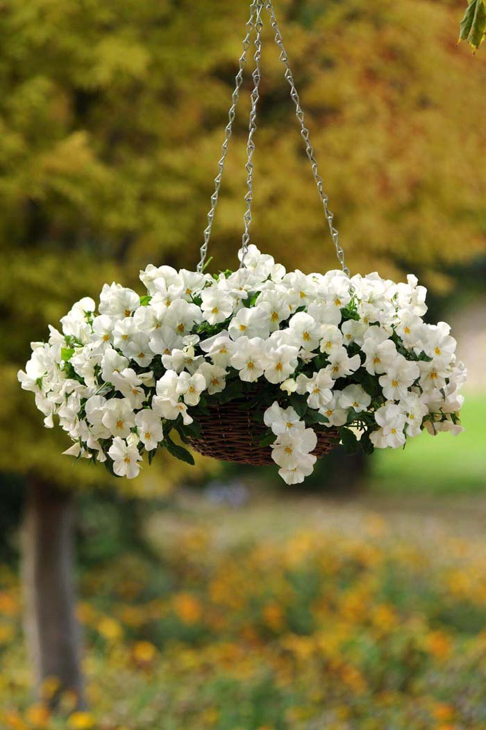 Sweetly Simple Woven Flower Basket #diy #planter #flower #hanging #garden #decorhomeideas