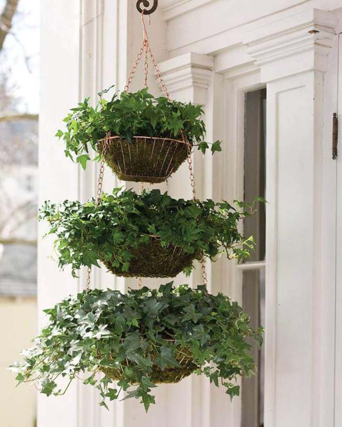 Three Tiered Hanging Ivy Baskets #diy #planter #flower #hanging #garden #decorhomeideas
