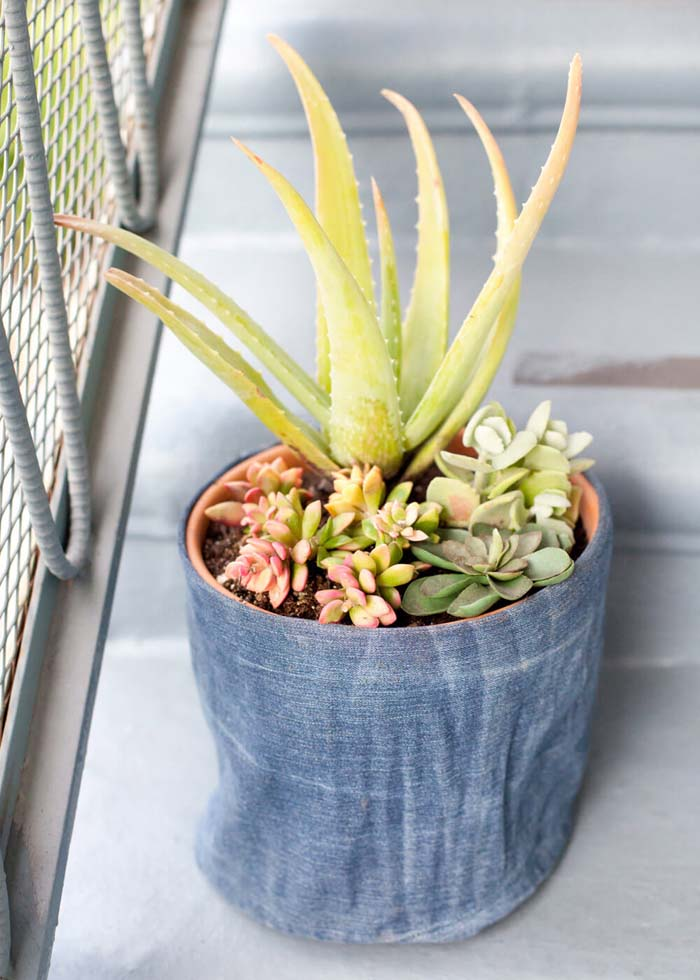 Your Plants' Favorite Pair of Jeans #diy #flowerpot #garden #flower #decorhomeideas