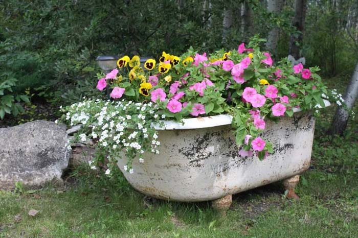 Antique Bathtub as Garden Décor #garden #container #planter #decorhomeideas