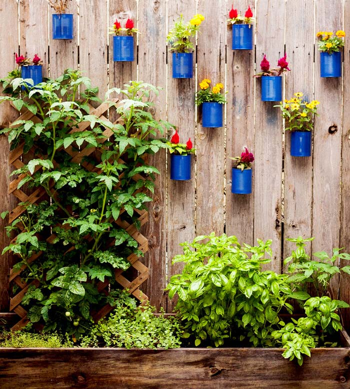 Backyard Tin Can Fence Garden #garden #upcycled #diy #decorhomeideas