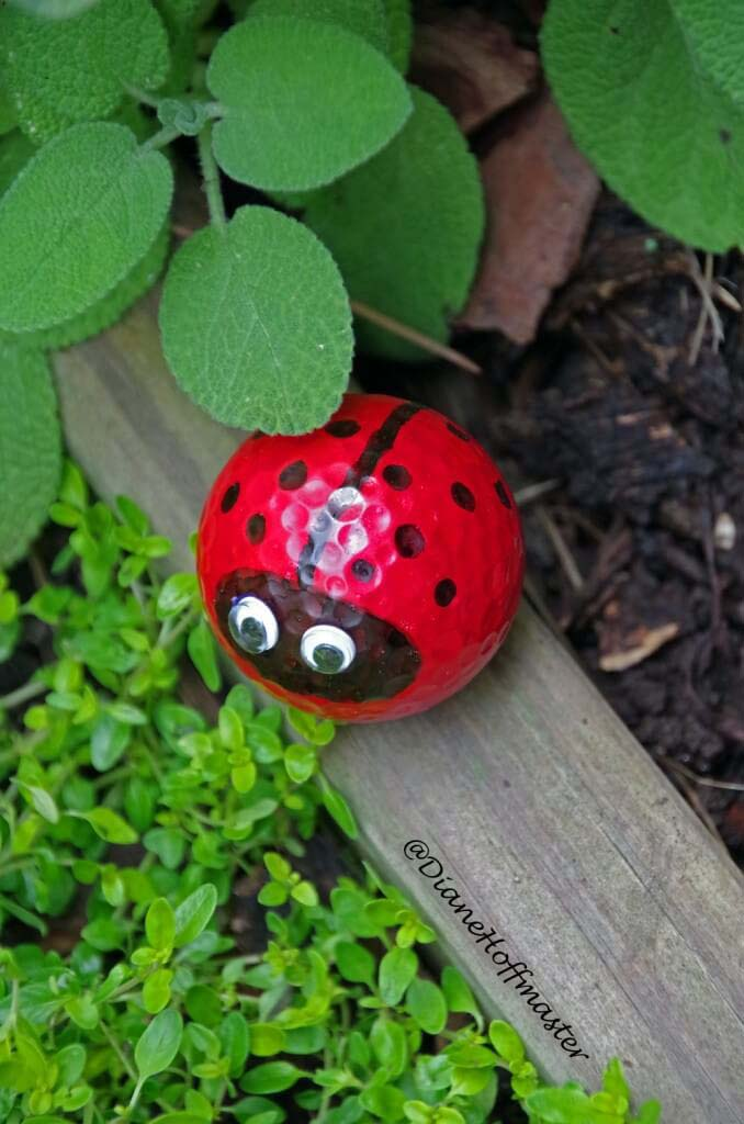 Googly-eyed Golf Ball Ladybug #garden #upcycled #diy #decorhomeideas