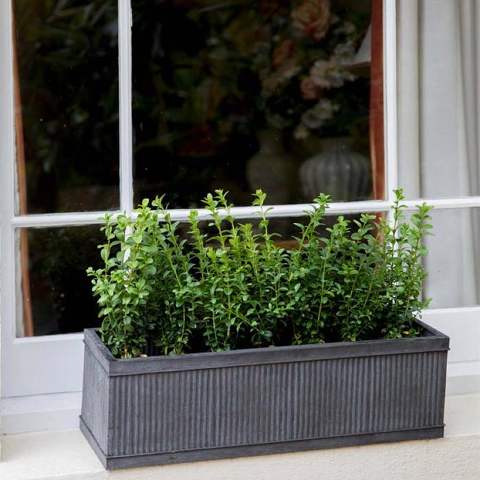 Ridged Metal Window Box With Greenery #planter #box #window #decorhomeideas