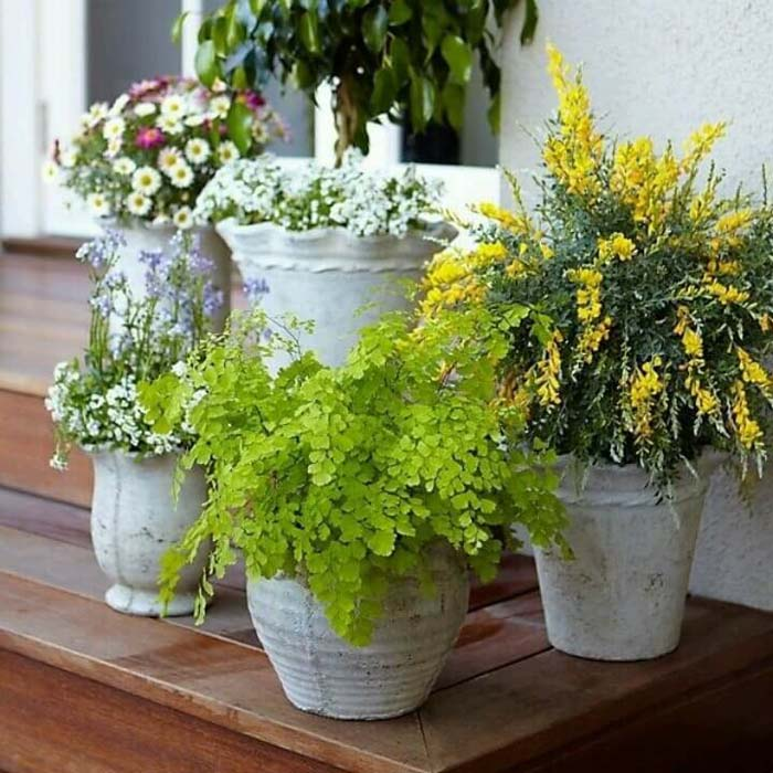 Scalloped Planters #diy #planter #porch #decorhomeideas