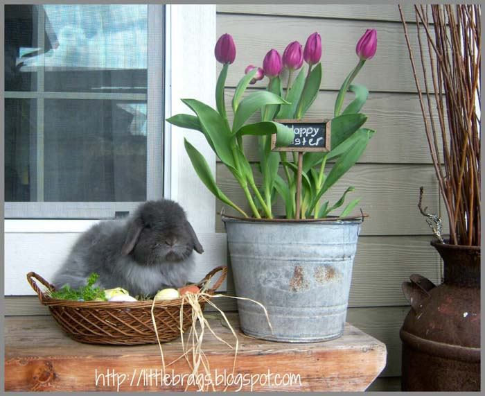 Tulips in an Old Pail #diy #planter #porch #decorhomeideas