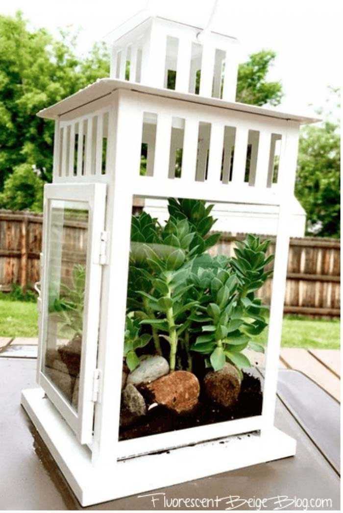White Lantern Planter with Succulents #diy #planter #porch #decorhomeideas