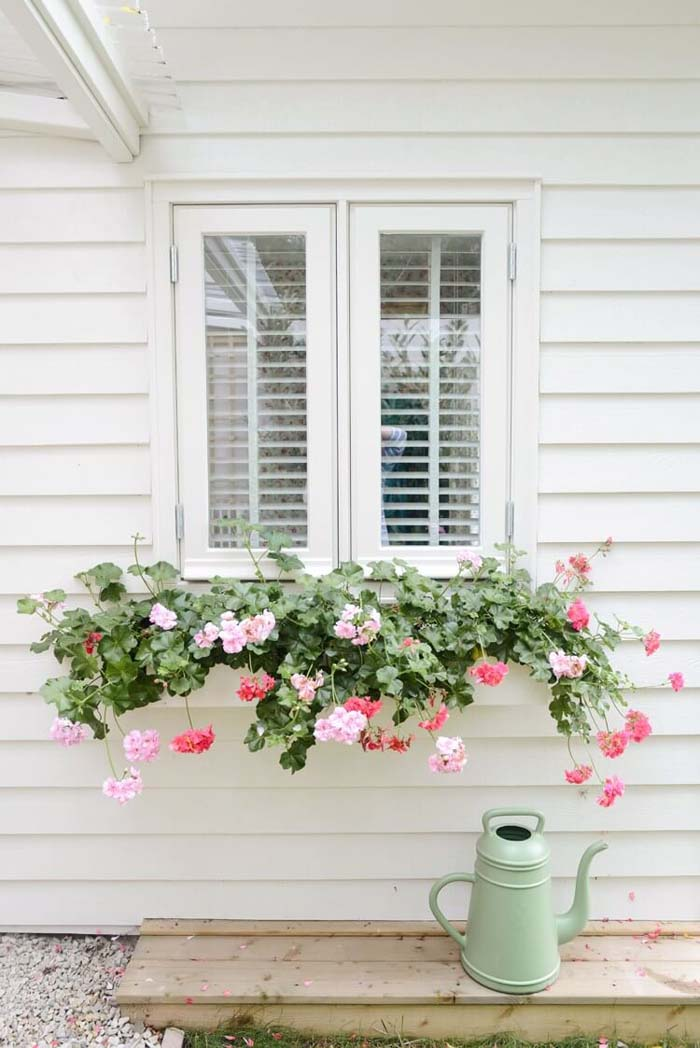 White Window Box With Cascading Flowers #planter #box #window #decorhomeideas