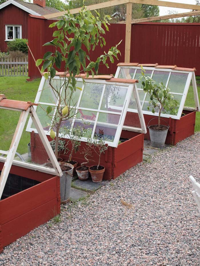 Make Cold Frames with Old Windows #old #window #garden #decorhomeideas