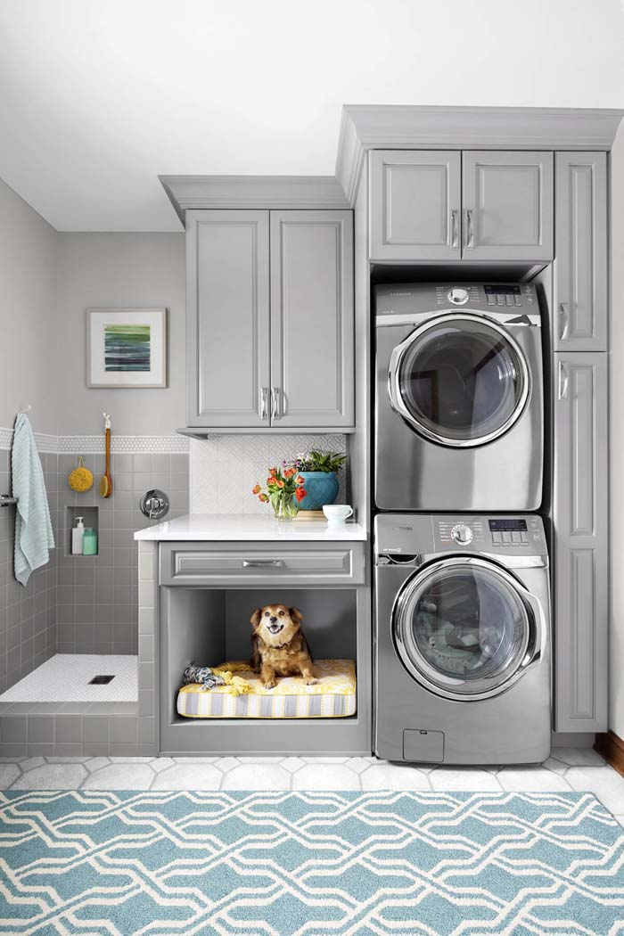 Clothes and Pet Cleaning Laundry Room #laundryroom #small  #design #decorhomeideas