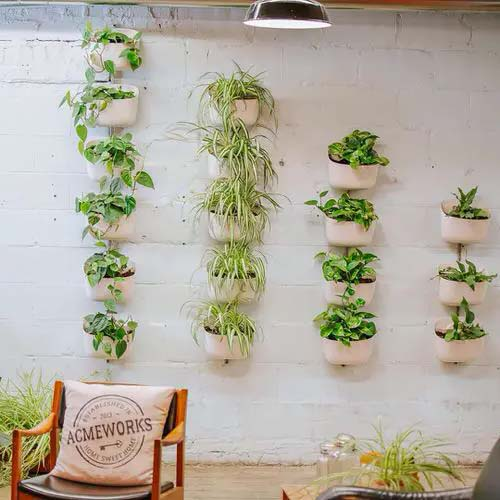 Descending Plant Columns #houseplant #wall #decor #decorhomeideas