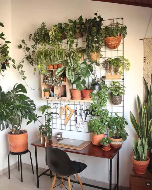 Green Office Wall #houseplant #wall #decor #decorhomeideas
