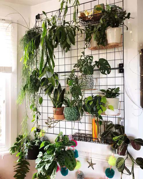 Oversized Plant Grid #houseplant #wall #decor #decorhomeideas