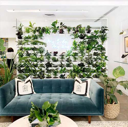 Plants + Neon = Glam #houseplant #wall #decor #decorhomeideas